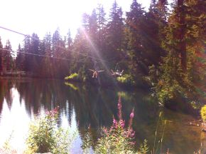 Ziplining on Grouse Mountain,Vancouver