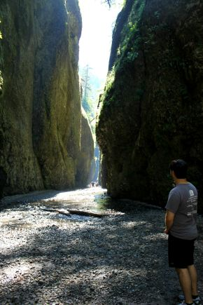 Chasing Waterfalls at Oneonta Gorge